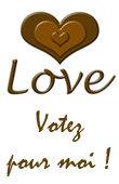 Votez_pour_moi